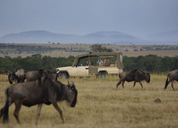 zpskenyasafaris.com-fairmont-mara-safari-club-game-drive