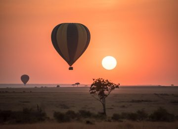 zpskenyasafaris.com-maasai-mara-hot-air-baloon3